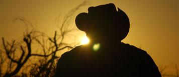 Australia-farming-cowboy